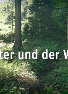 """HAFL Spot """"Walter und der Wald"""""""
